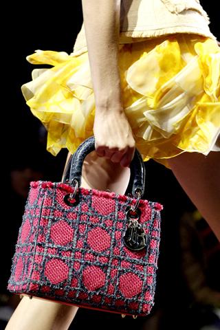 Christian Dior Bag_Spring 2011