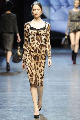 Animal Print_Dolce&Gabbana_Fall 2010