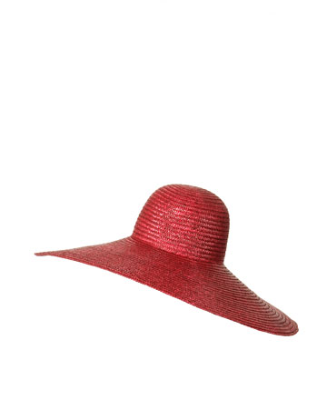 Zara Wide Brimmed Hat_£26